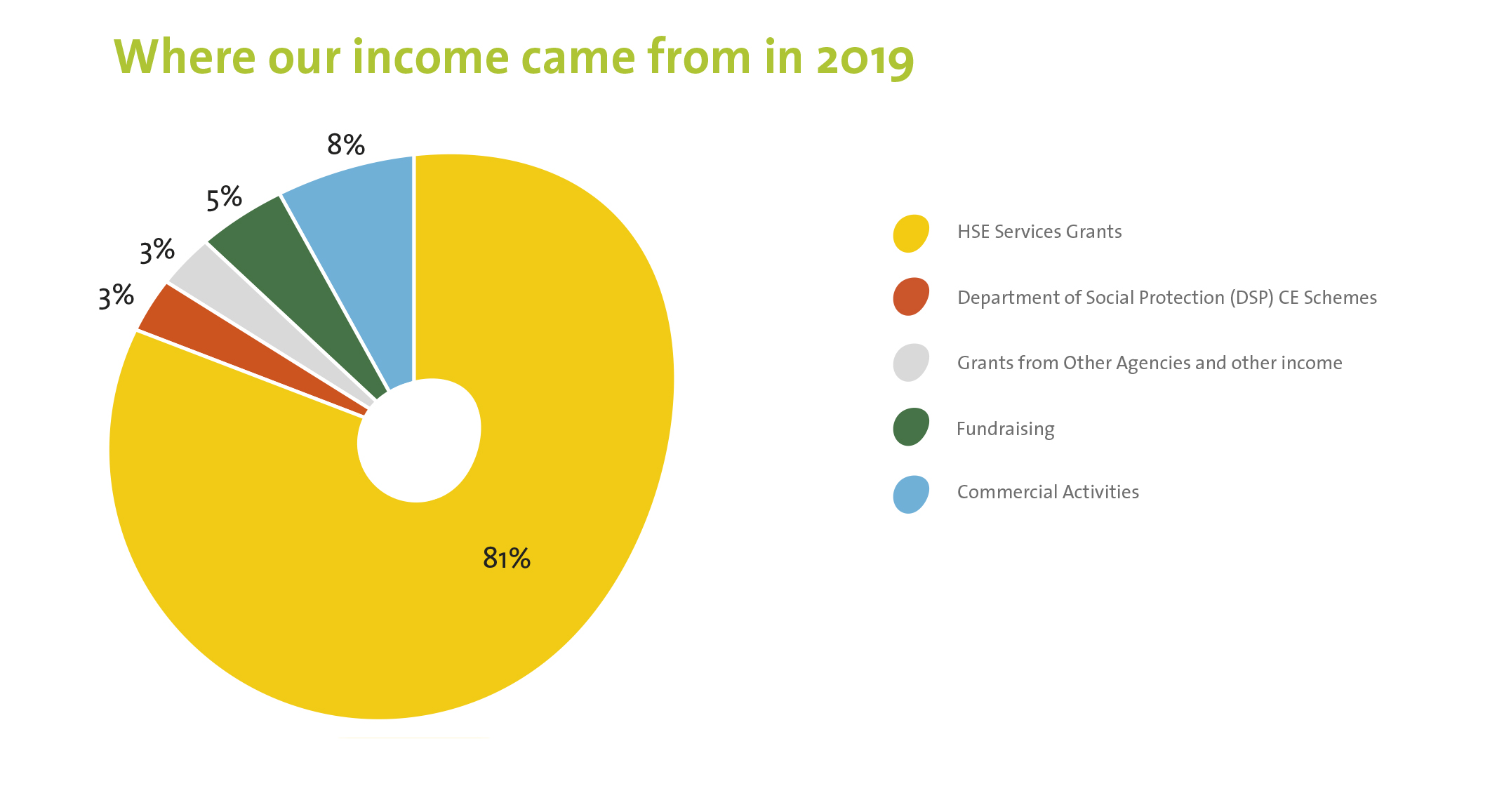 Pie chart showing where Enable Ireland income came from in 2019