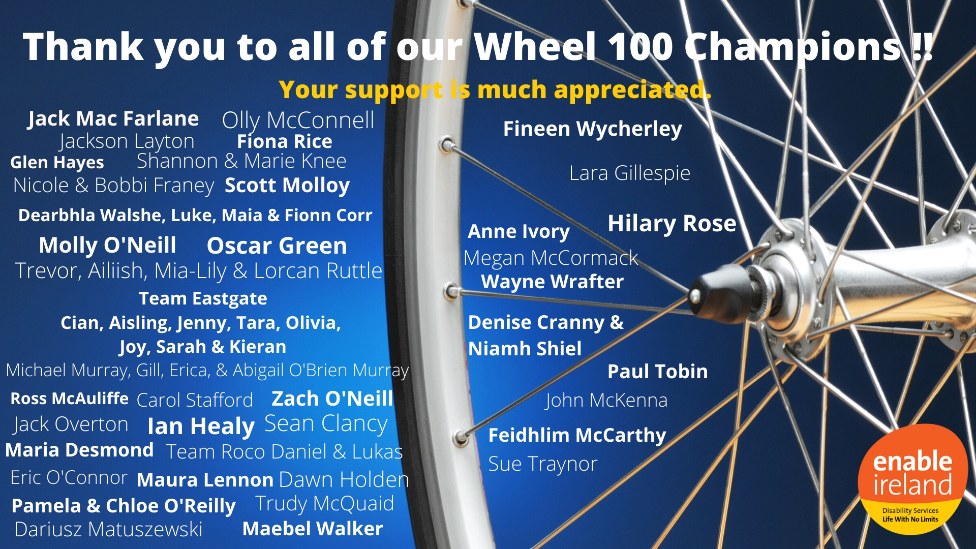 List of the Wheel 100 champions who raised funds for Enable Ireland
