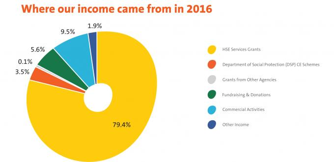 Pie chart showing where Enable Ireland income came from in 2016